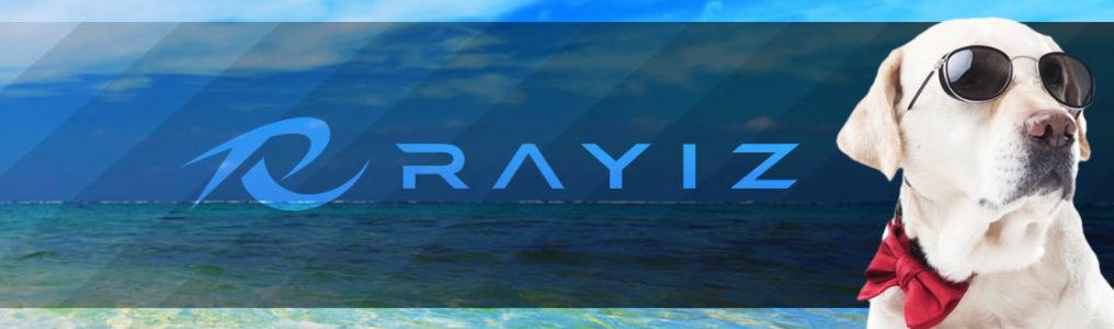 可視光線透過率RAYIZ